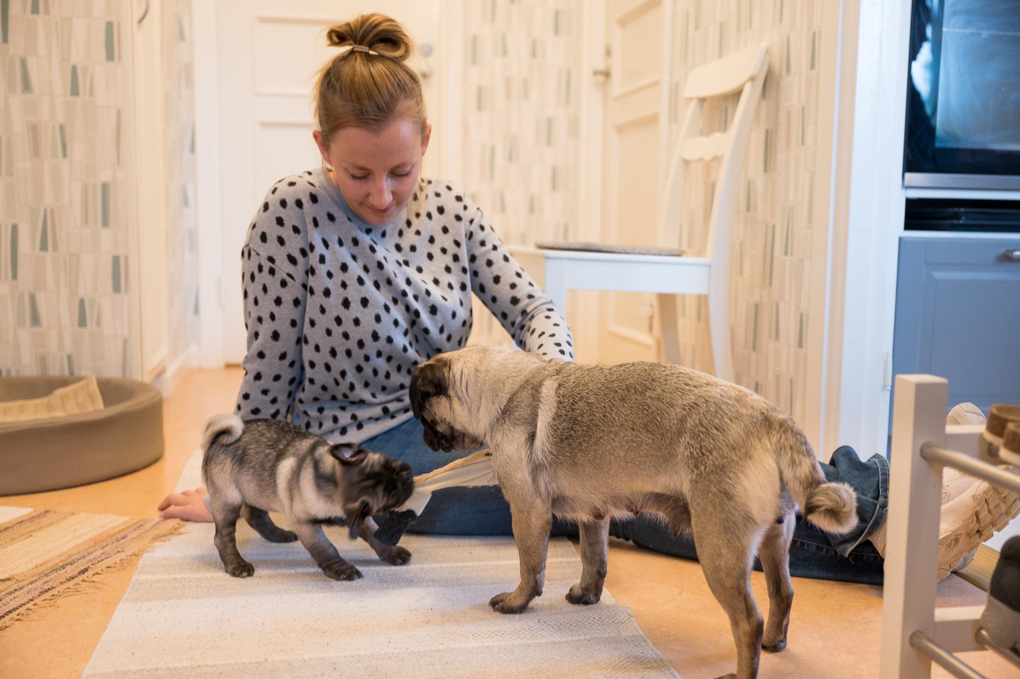 Betty kampar med Molly om ett mjukisdjur medan Leni tittar på